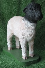 Standing Sheep (Detailed Finish)