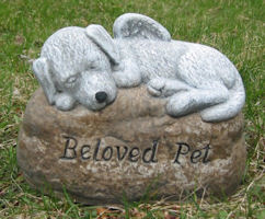 Puppy on Beloved Pet stone