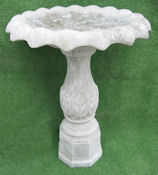 Medium Segregated Top with Fern Base